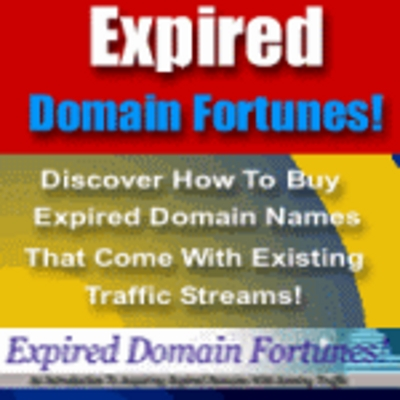 Product picture Expired Domain Fortunes-Make money with domains